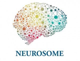 neurosome-blue-serif